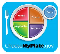 Follow the MyPlate guidelines for optimal senior health.