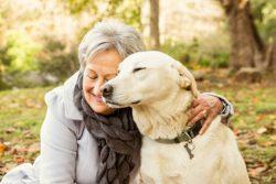 Seniors and Pets